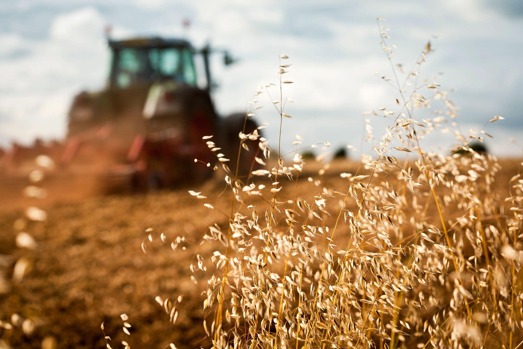Crop Insurance Basics | 1: APH